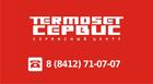 Профессиональный ремонт газовых котлов и газовых колонок